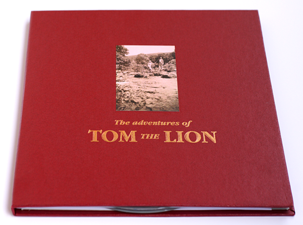Tom The Lion